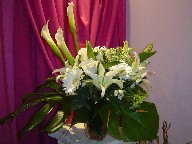 Calla lillies, lillies, Queen Anne's lace, roses, gerbera, alstroemeria, and monstera