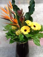 Bird of paradise, gerbera, protea, leucadendron, and renaissance leaves