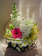 Snapdragon, gerbera, alstroemeria, lillies, daisies, and monkey grass