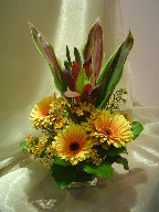 Gerbera, waxflowers, and cordeline