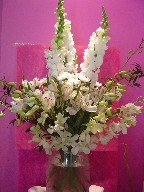 Snapdragon, alstroemeria, pompoms, and orchids