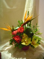 Bird of paradise, cymbidium orchids, roses, celosia, solidago, hypericum, and cordeline