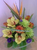 Bird of paradise, cymbidium orchids, spider mums, rose, alstroemeria, aster, and monkey grass