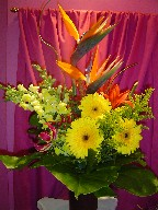 Bird of paradise, gerbera, snapdragon, solidago, coffee beans, lillies, monstera, and curly willow