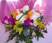 Tulips, vendela roses, dendrobium orchids, solidago, pompom, and blue thistle
