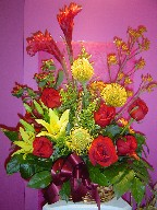 Ginger, kangaroo, protea, lillies, coffee beans, solidago, gerbera, and roses