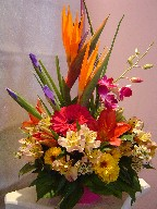 Bird of paradise, iris, dendrobium orchids, gerbera, lillies, alstroemeria, daisies, and waxflowers