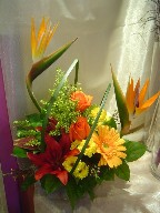 Bird of paradise, roses, gerbera, lillies, daisies, solidago, and monkey grass