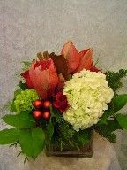 Hydreangea, amaryllis, roses, and Christmas decorations