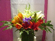 Amaryllis, lillies, iris, snapdragon, calla lillies, alstroemeria, and philodendron