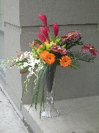 Anthurium, ginger, lillies, roses, gerbera, sago palm, dendrobium and cymbidium orchids, and monkey grass