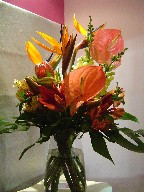 Anthurium, bird of paradise, protea, alstroemeria, lillies, snapdragon, and monstera