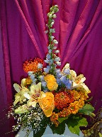 Protea, delphinium, roses, shocking lillies, daisies, alstroemeria, and genest