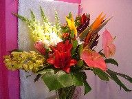 Bird of paradise, anthurium, iris, protea, cymbidium orchids, monstera, eucadendron, lillies, and coffee beans