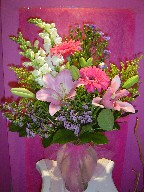 Snapdragon, lillies, gerbera, monte casino blue, and waxflowers