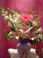 Snapdragon, lillies, gerbera, waxflowers, and alstroemeria