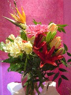 Bird of paradise, alstroemeria, curly willow, tulips, solidago, lillies, gerbera, and ruscus
