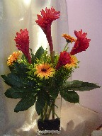 Ginger, gerbera, solidago, and fatsia japonica
