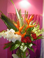 Heliconia, sago palm, cymbidium orchids, snapdragon, gerbera, coffee beans, aralia-fatsia, and tea leaves
